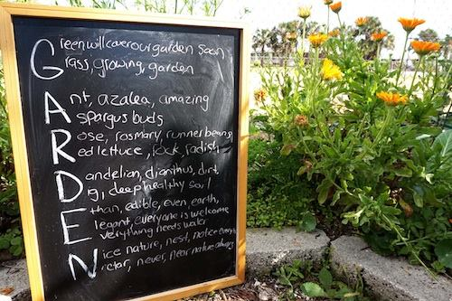 Chalkboard with sentences about gardening